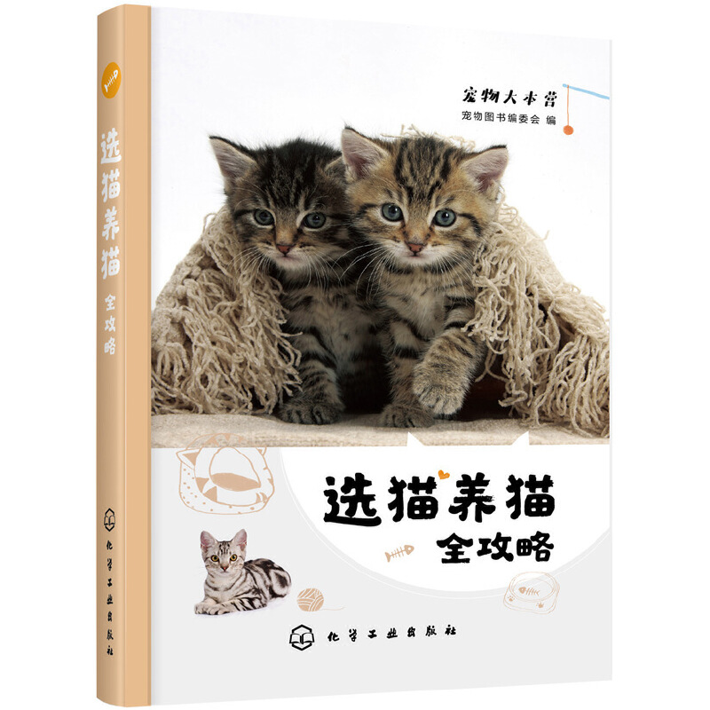 Cats selection and raising/选猫养猫全攻略